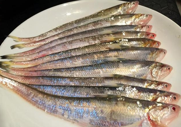 The best five kinds of fish in the country